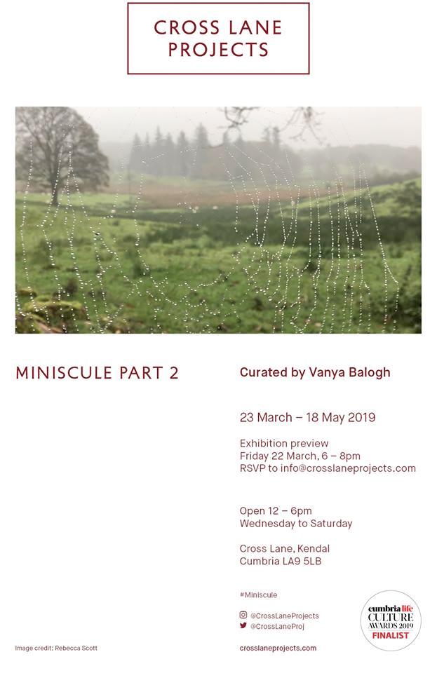 miniscule cross lane projects flyer
